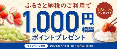 期間中、「ふるさと納税」を10,000円以上お支払いいただいた方の中から抽選で3人に1人の方に1,000円相当のポイントをプレゼントいたします。