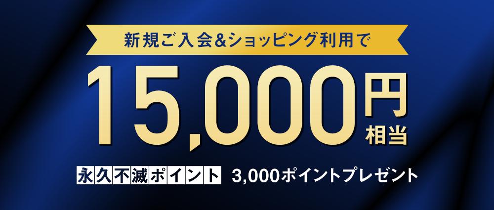 期間中、カード発行月の3か月後の月末までに30万円(税込)以上のご利用で永久不滅ポイント3,000ptプレゼント